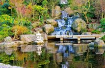 Water Features   Waterfalls   Ponds