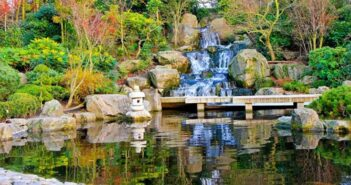 Water Features | Waterfalls | Ponds